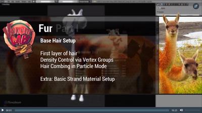 1. Base Hair Set-Up