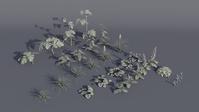 Flower Assets Frozen - Test