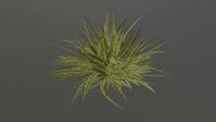 Grass growing test 01