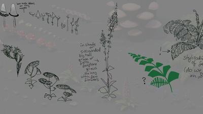 plants_notes.jpg