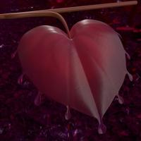 The final love leaf
