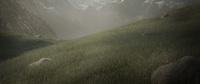 Meadow - test render