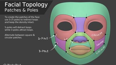 Facial Topology - Patches & Poles