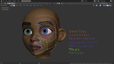 File 4: Facial Topology & Planning
