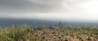 Cliffside environmental details