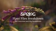 Plant Files Breakdown