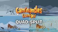 Quad-split