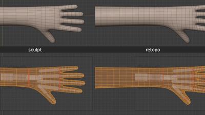 Victoria fingers, hand, arm - retopo