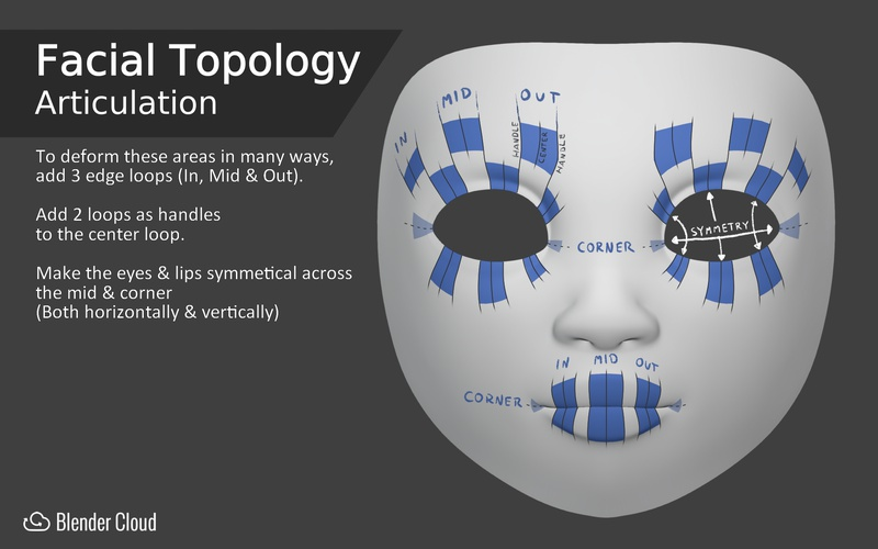 Facial Topology - Articulation