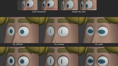 Rex eyes - iris perspective correctives