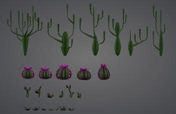 Desert Assets - Cacti