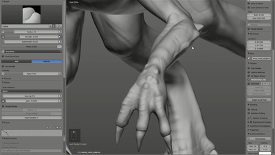 Detailing Hands and Feet