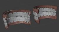 Ellie teeth - retopo