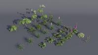 Flower Assets - Test