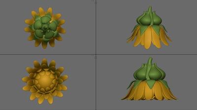 Dandelion Sponge Model