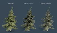 Pine Tree Setup Test