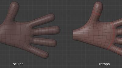Jay hand, palm - retopo