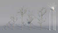 Tree Model Arrangements Tests 04