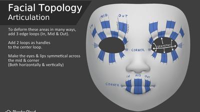 Facial Topology - Articulation