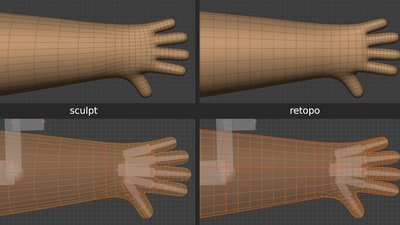 Phil fingers, hand, arm - retopo