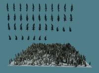 Pine tree cards