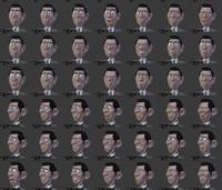 Agent 327 facials v1