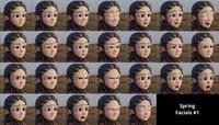 Spring Facials #1 (original) - Rendered