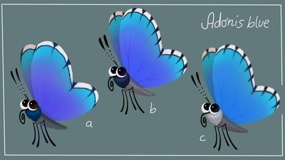Adonisblue Butterfly design