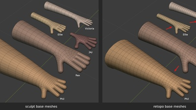 Human arm, hands, fingers - mesh re-use