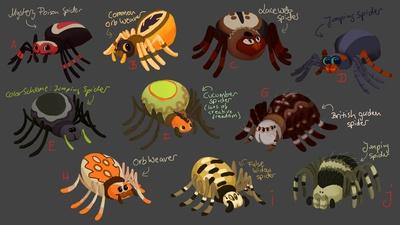 Spiders design sheet